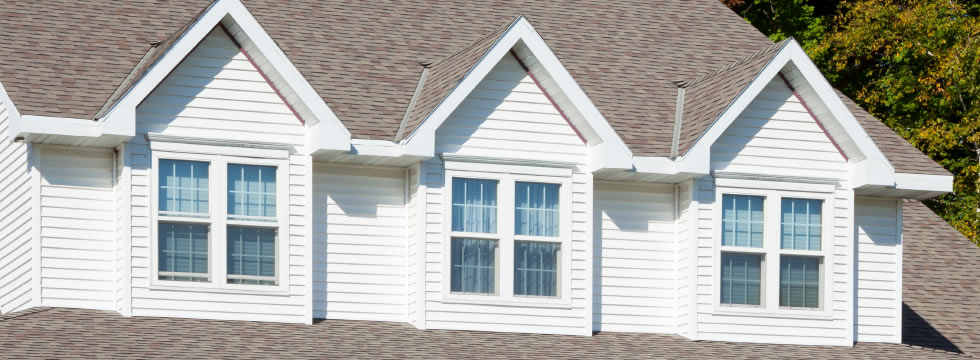 Vinyl Siding Buffalo Roof Repair Buffalo Next Level